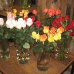 Flora flowershop
